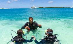 Bahamas Urlaub Tauchen