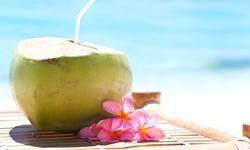 Jamaica Urlaub Kokosnuss