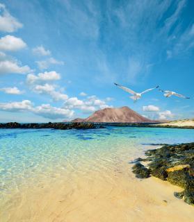 Fuerteventura vakantie Spanje