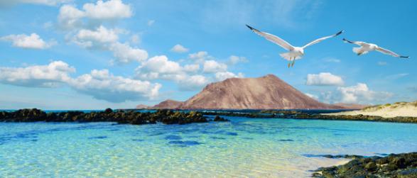 Vakanties naar Fuerteventura boek je bij FTI