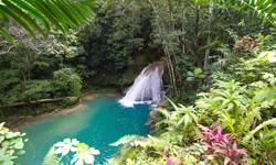 Jamaica Natur
