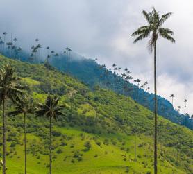 Kolumbien Urlaub FTI
