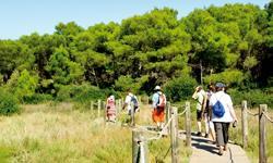 Last Minute Menorca S'Albufera d'Es Grau