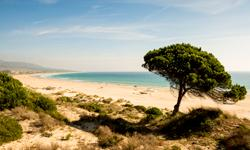 Last Minute Spanien Andalusien Strand