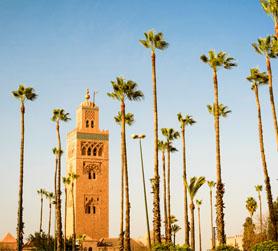Golf Marrakech - Maroc