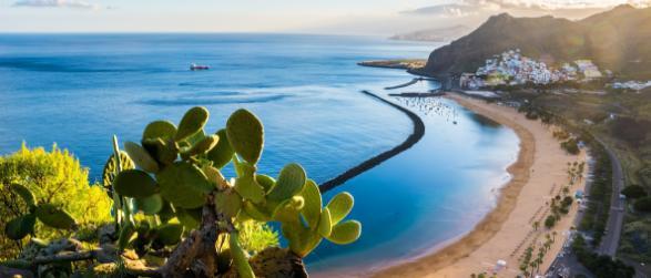 Vakanties naar Tenerife boek je bij FTI