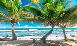 Vacances Sri Lanka
