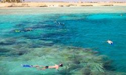 Wadi El Gemal snorkelen
